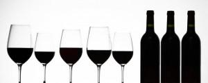 Degustation Vin rouge