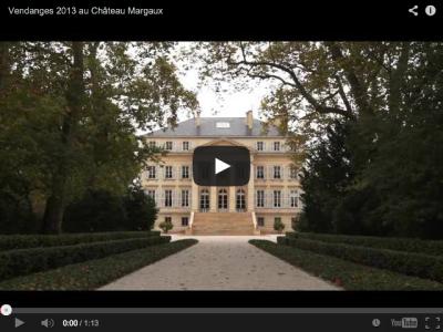 Vendanges 2013 au Châeau Margaux