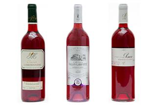 Dégustation Bordeaux Clairet Millésime 2013