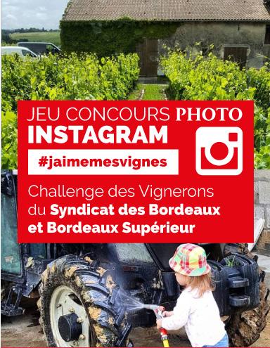 #jaimemesvignes #vendanges2016