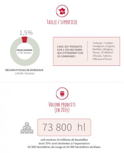 AOC Pessac Léognan Infographie