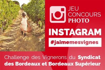 #jaimemesvignes #vendanges2017