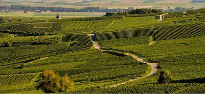 Master Pros Bordeaux-Rive Droite