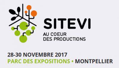 Sitevi 2017
